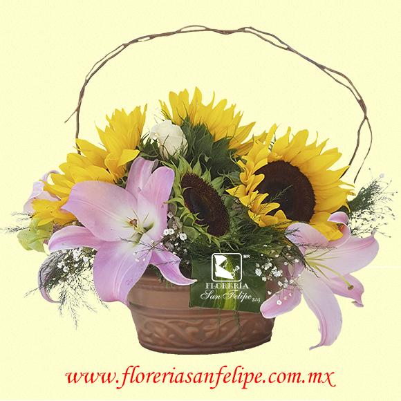 Florería San Felipe En Torreón Coahuila México